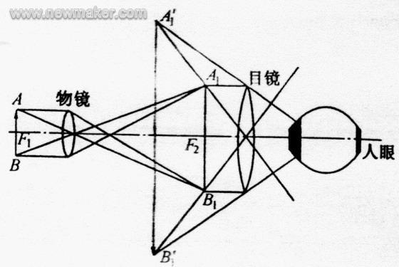 金相显微镜的结构及原理